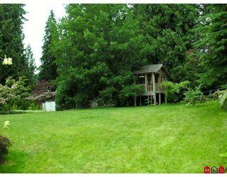 Photo 10: 32437 EGGLESTONE AV in Mission: House for sale : MLS®# F2821390