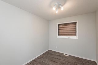 Photo 22: 186 Coral Springs Boulevard NE in Calgary: Coral Springs Detached for sale : MLS®# A1146889