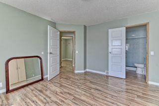 Photo 13: 262 Martinwood Place NE in Calgary: Martindale Detached for sale : MLS®# A1123392