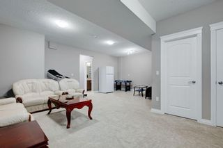 Photo 31: 8233 SADDLEBROOK Drive NE in Calgary: Saddle Ridge Detached for sale : MLS®# A1082147