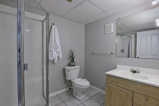 Photo 39: 92 Coopers Heights SW: Airdrie Detached for sale : MLS®# A1129030