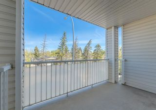 Photo 19: 2212 6224 17 Avenue SE in Calgary: Red Carpet Apartment for sale : MLS®# A1115091