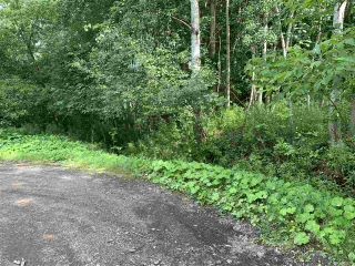 Photo 2: Brook Street in Trenton: 107-Trenton,Westville,Pictou Vacant Land for sale (Northern Region)  : MLS®# 202014523