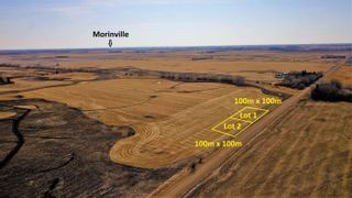 Photo 2: Lot 2 TWP 564 RR 250: Rural Sturgeon County Rural Land/Vacant Lot for sale : MLS®# E4265825