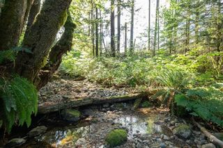 Photo 12: LOT 2 3060 SUNNYSIDE Road in Port Moody: Anmore Land for sale : MLS®# R2603441
