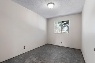 Photo 14: 211 Templewood Road NE in Calgary: Temple Detached for sale : MLS®# A1124451