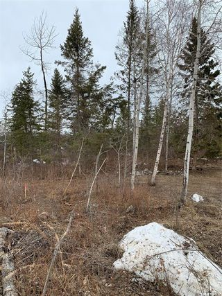 Photo 12: LOT AT MORIN LAKE in Canwood: Lot/Land for sale (Canwood Rm No. 494)  : MLS®# SK846709