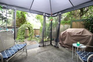 """Photo 14: 5137 203 Street in Langley: Langley City Townhouse for sale in """"Longlea Estates"""" : MLS®# R2609722"""