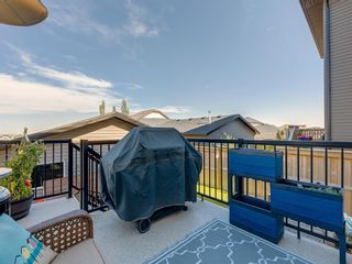 Photo 33: 258 NOLAN HILL Drive NW in Calgary: Nolan Hill Detached for sale : MLS®# A1018537