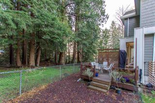 """Photo 16: 9 3495 147A Street in Surrey: King George Corridor Townhouse for sale in """"Elgin Creek Estates"""" (South Surrey White Rock)  : MLS®# R2423354"""