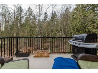 """Photo 17: 53 10151 240 Street in Maple Ridge: Albion Townhouse for sale in """"ALBION STATION"""" : MLS®# R2133799"""