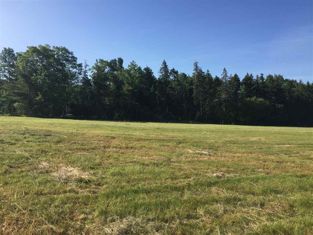 Main Photo: Lot 4 Pine Meadows Subdivision in Pine Grove: 405-Lunenburg County Vacant Land for sale (South Shore)  : MLS®# 202007559