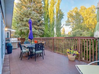 Photo 37: 207 WILLOW RIDGE Place SE in Calgary: Willow Park Detached for sale : MLS®# C4302398