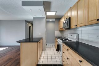 Photo 10: 307 903 19 Avenue SW in Calgary: Lower Mount Royal Apartment for sale : MLS®# A1152500