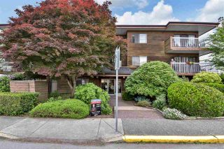 """Photo 1: 104 11957 223 Street in Maple Ridge: West Central Condo for sale in """"Alouette Apartments"""" : MLS®# R2586639"""