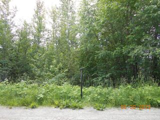 Photo 1: 247 Aspen Road in Anglemont: Land Only for sale : MLS®# 10066280