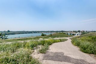 Photo 45: 62 Massey Place SW in Calgary: Mayfair Detached for sale : MLS®# A1132733