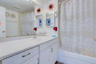 Photo 12: 253 LEE RIDGE Road in Edmonton: Zone 29 House for sale : MLS®# E4237736