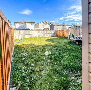 Photo 42: 3914 CLAXTON Loop in Edmonton: Zone 55 House for sale : MLS®# E4266341