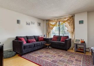 Photo 20: 209 1900 25A Street SW in Calgary: Richmond Apartment for sale : MLS®# A1101426