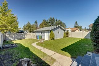 Photo 35: 40 Rundlewood Bay NE in Calgary: Rundle Detached for sale : MLS®# A1141150