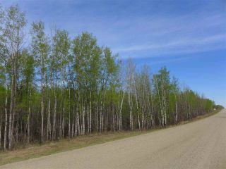 Photo 5: 50 Ave RR 281: Rural Wetaskiwin County Rural Land/Vacant Lot for sale : MLS®# E4191207