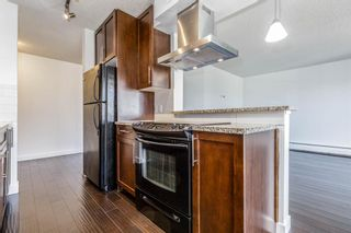 Photo 14: 401C 4455 Greenview Drive NE in Calgary: Greenview Apartment for sale : MLS®# A1052674