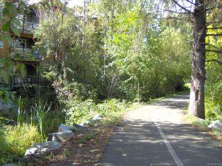 Photo 9: 202A 1800 Riverside Lane in COURTENAY: CV Courtenay City Condo for sale (Comox Valley)  : MLS®# 792123