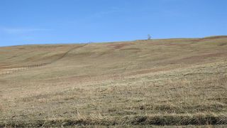 Photo 16: SW 36-20-3W5: Rural Foothills County Residential Land for sale : MLS®# A1101413