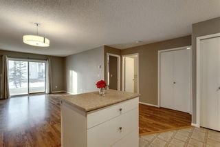 Photo 10: 107 3000 Citadel Meadow Point NW in Calgary: Citadel Apartment for sale : MLS®# A1070603
