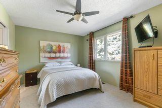 Photo 11: 9831 185 Street in Edmonton: Zone 20 House for sale : MLS®# E4262793