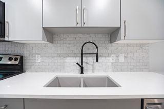 Photo 31:  in Edmonton: Zone 04 House for sale : MLS®# E4253304