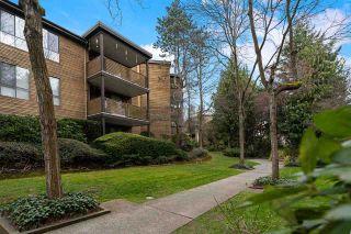 Photo 23: 405 10644 151A STREET in Surrey: Guildford Condo for sale (North Surrey)  : MLS®# R2560461