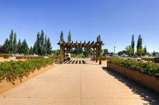Photo 38: 321 278 SUDER GREENS Drive in Edmonton: Zone 58 Condo for sale : MLS®# E4258888