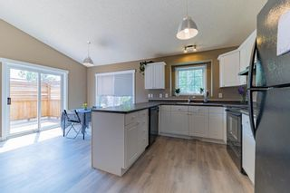 Photo 16: 1 ERINWOODS Place: St. Albert House for sale : MLS®# E4254213