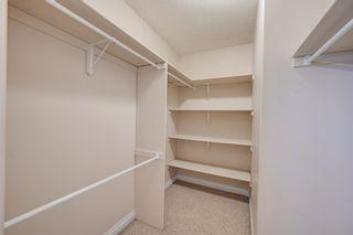 Photo 19: 10345 93 Street in Edmonton: Zone 13 House for sale : MLS®# E4251011