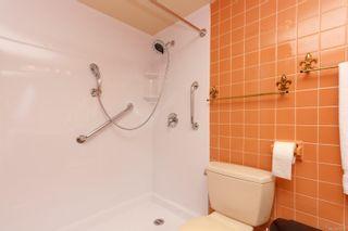 Photo 19: 207 250 Douglas St in : Vi James Bay Condo for sale (Victoria)  : MLS®# 872538