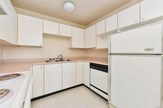 Photo 8: 203 3460 Quadra St in : SE Quadra Condo for sale (Saanich East)  : MLS®# 882774