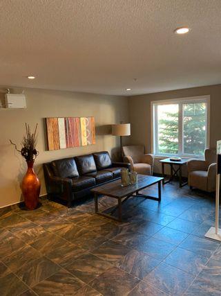 Photo 4: 401 1031 173 Street in Edmonton: Zone 56 Condo for sale : MLS®# E4262432