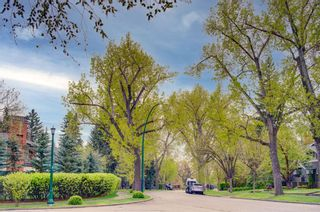 Photo 50: 2719 Wolfe Street SW in Calgary: Upper Mount Royal Detached for sale : MLS®# A1110575