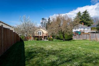 Photo 14: 3301 Linwood Ave in : SE Maplewood House for sale (Saanich East)  : MLS®# 871406