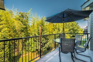 """Photo 33: 51 34230 ELMWOOD Drive in Abbotsford: Abbotsford East Townhouse for sale in """"TEN OAKS"""" : MLS®# R2597148"""