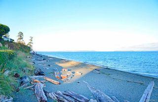 Photo 50: 5173 Lochside Dr in Saanich: SE Cordova Bay House for sale (Saanich East)  : MLS®# 839422