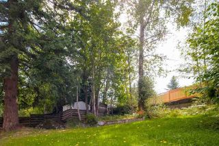 Photo 15: 33182 CHERRY Avenue in Mission: Mission BC House for sale : MLS®# R2175768
