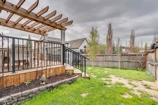Photo 41: 104 Copperfield Crescent SE in Calgary: Copperfield Detached for sale : MLS®# A1110254