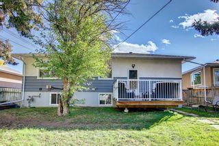 Photo 44: 1223 Richland Road NE in Calgary: Renfrew Detached for sale : MLS®# A1153557
