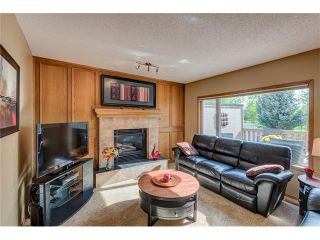 Photo 16: 85 SUNMEADOWS Crescent SE in Calgary: Sundance House for sale : MLS®# C4115750