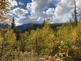 Photo 24: DL3592 & DL4084 1020 Forest Service Road in Seymour Arm: syemour arm Land Only for sale (shuswap)  : MLS®# 10241424