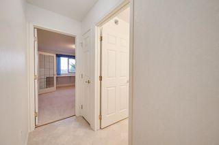Photo 21: 401 10915 21 Avenue in Edmonton: Zone 16 Condo for sale : MLS®# E4249968