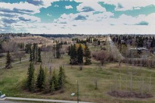 Photo 39: 403 3511 14A Street SW in Calgary: Altadore Row/Townhouse for sale : MLS®# A1104050